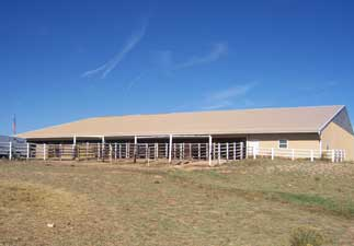 Be Line Equestrian Center